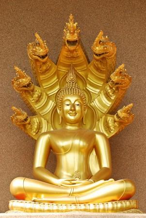 Buddha sit photo