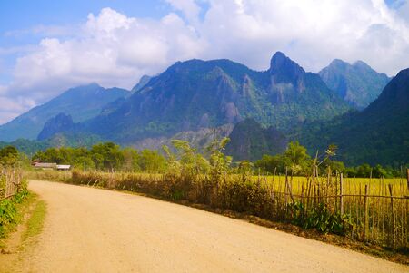 Rice field in Vang Vieng, Laos