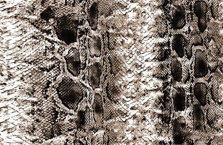 Animal orginal snake skin surface pattern Stockfoto - 132292775
