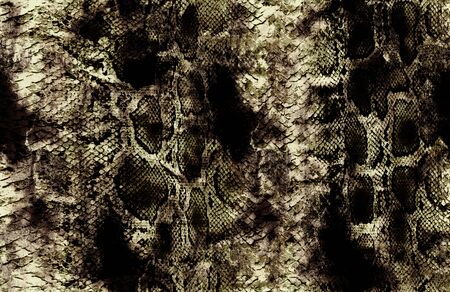 antique snakeskin and yellow surface pattern Stockfoto - 131954313