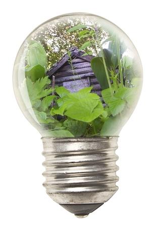 Ekologická koncepce - žárovka
