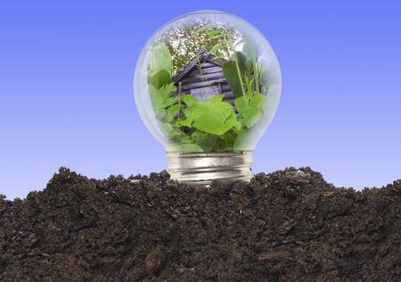 Ecological Concept - Bulb Stock Photo - 12917972