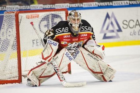 Johan Gustafsson - Drafted by Minnesota Wild (NHL) 2012 Stock Photo - 13887802
