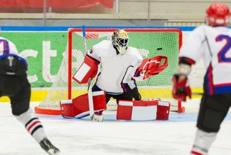 Lední hokej Brankářské Reklamní fotografie