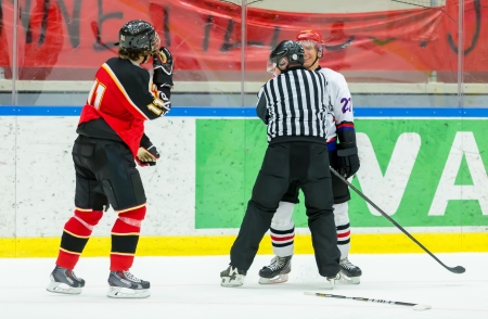 Ice Hockey Fight Stock Photo