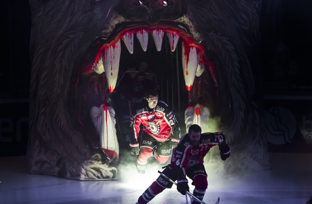 Lulea, Sweden - March 18, 2015. Daniel Zaar (#27 Lulea Hockey) enters the ice in Coop Arena. Swedish Hockey League-game, between Lulea Hockey and Frolunda Indians.