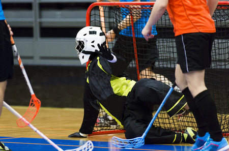 goalie: Floorball Goalie