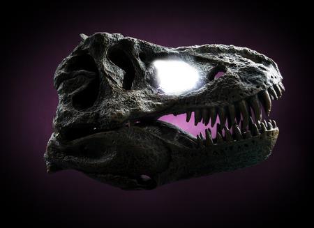 tyrannosaurus rex: Tyrannosaurus Rex skull