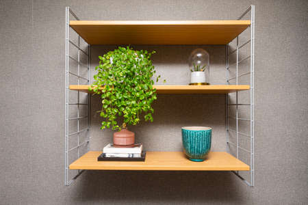 Interior home styling classic and modern shelf