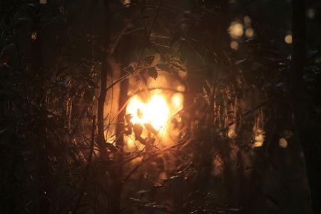 Hidden Sun Imagens