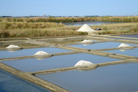 Salt marsh of Guarande