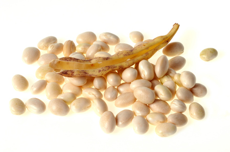 Beans in grains