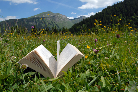 The book in a field