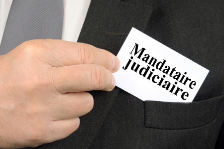 The judicial representative