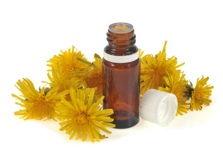 Dandelion essential oil  isolated on white