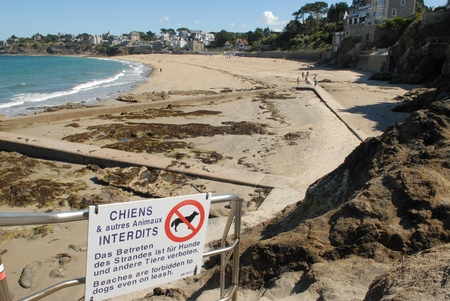 Beach forbidden to dogs Banque d'images - 108493751