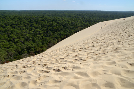 Dune of Pilat and forest of the moors 写真素材