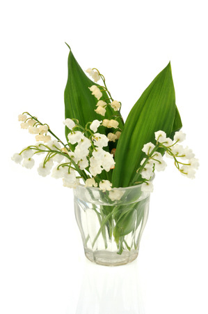 Strands of lily of the valley in a glass of water Stok Fotoğraf
