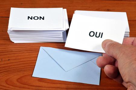 Referendum Banco de Imagens - 113315562