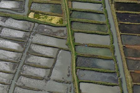 Salt marsh of Saint-Armel Stock Photo - 114492210