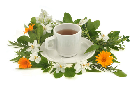 Herbal infusion Banque d'images