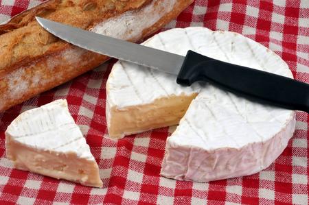 Camembert and bread Reklamní fotografie