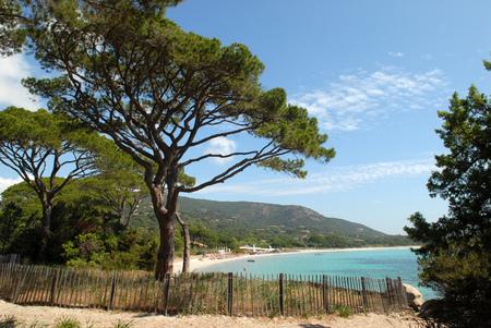 Plage de Palombaggia en Corse