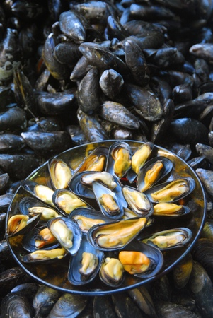 Plate of open mussels