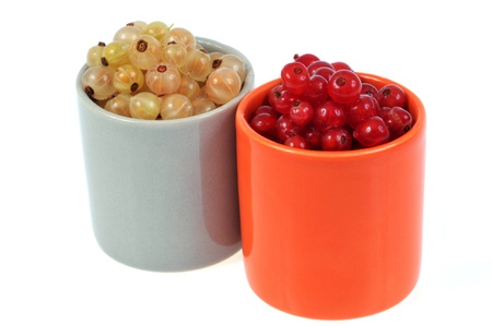 Ramekins of red and white currants on a white background