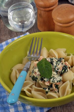 Pasta with a ricotta and spinach sauce on a plate Stock Photo