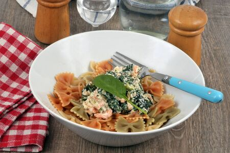 Farfalles with a ricotta and spinach sauce served on a plate
