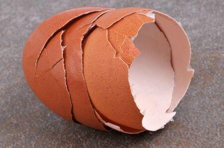 Empty eggshells close up on gray background  Banco de Imagens