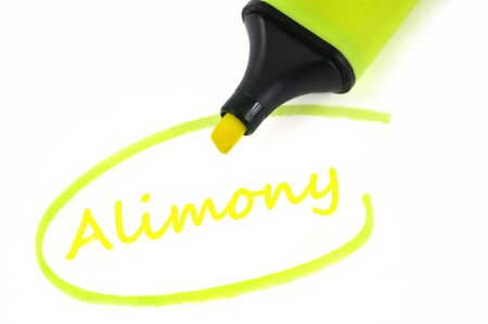 Alimony written in neon felt close up on white background