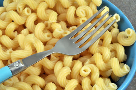 Plate of pasta with fork close up