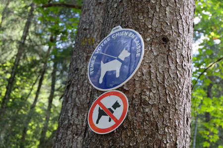 Signs on a tree indicating in French forbidden to dogs except on a leash