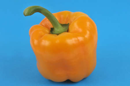 Raw bell pepper close-up on blue background Imagens