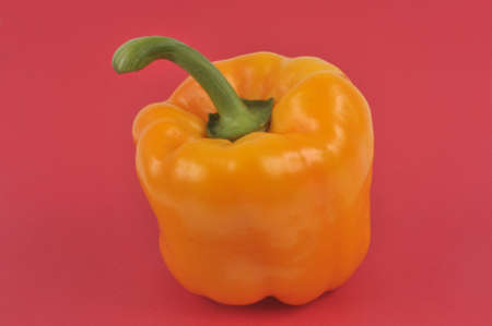Raw bell pepper close-up on red background
