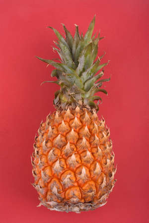 Pineapple close up on red background
