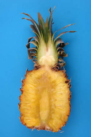 Pineapple cut in half close-up on blue background Banque d'images