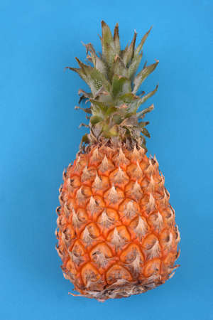 Pineapple close up on blue background
