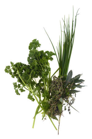 Parsley, chives, bay leaf and thyme close-up on white background