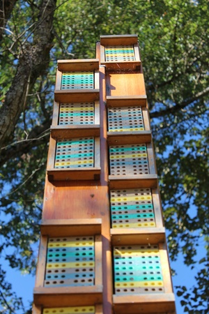 Highrise Bee Hive