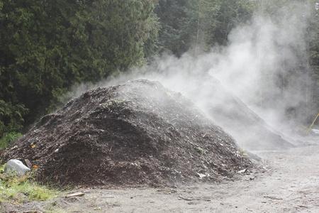 in a pile: Pila de compost