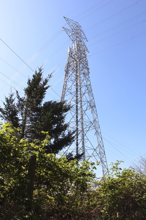 hydro electric: Trans-Provincial Hydro Electric Tower Stock Photo