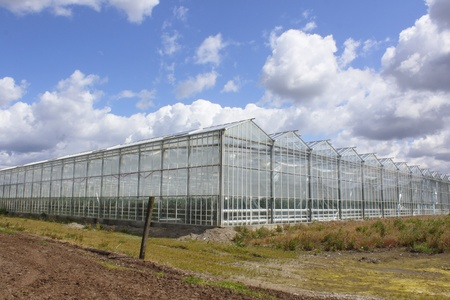 Glass Greenhouses Stock Photo
