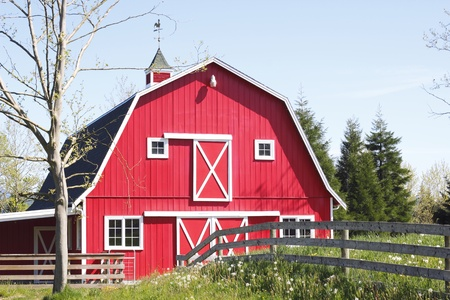 A Bright Red Barn Stock Photo - 13585463