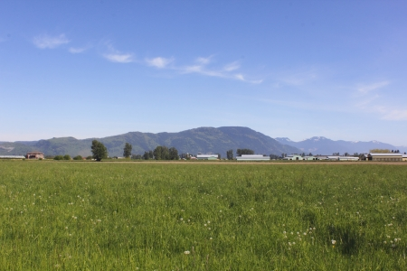 Grassland in the Fraser Valley