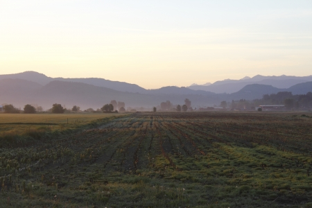 Early Morning Mountain Range and Farmland Stock Photo - 13628573