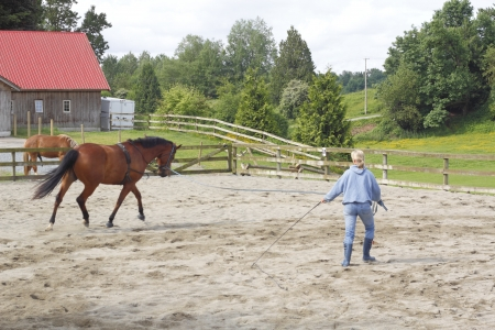 A trainer exercises her Mare Stock Photo - 13875520