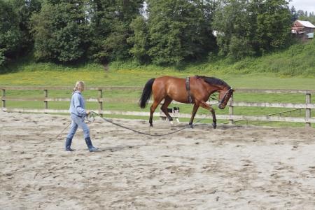 Trainer en haar Mare